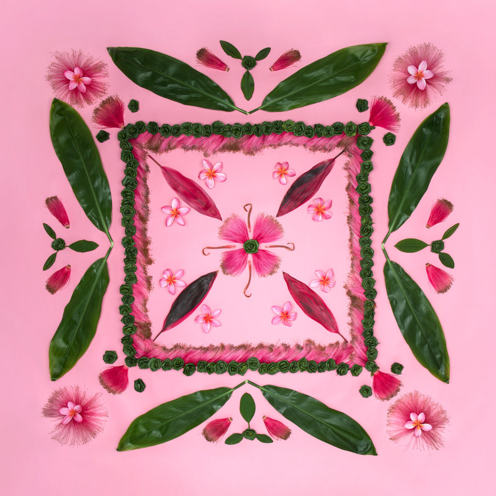 pink background photo with plumeria te leaves bombax and ocean dreamer leis