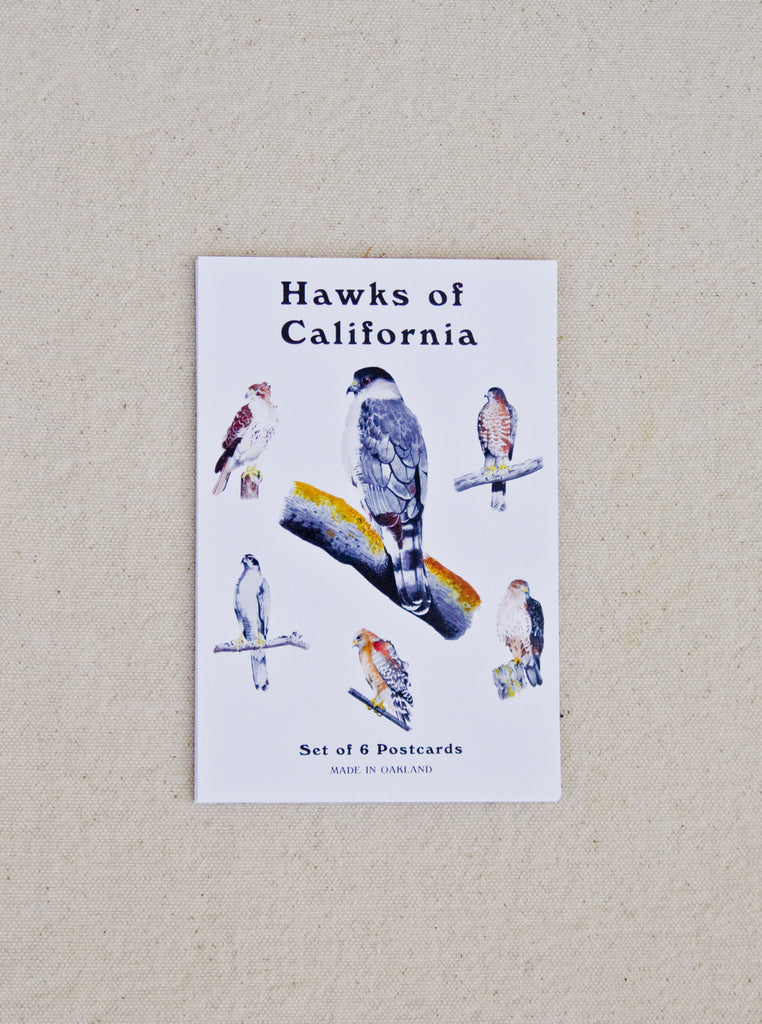 Hawks of California Postcards