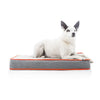 High Density Waterproof Pet Bed