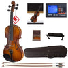Ebony Fitted Violin With Strings,Size 4/4