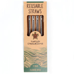 Reusable Smoothie Straws - 4 Pack (Silver)