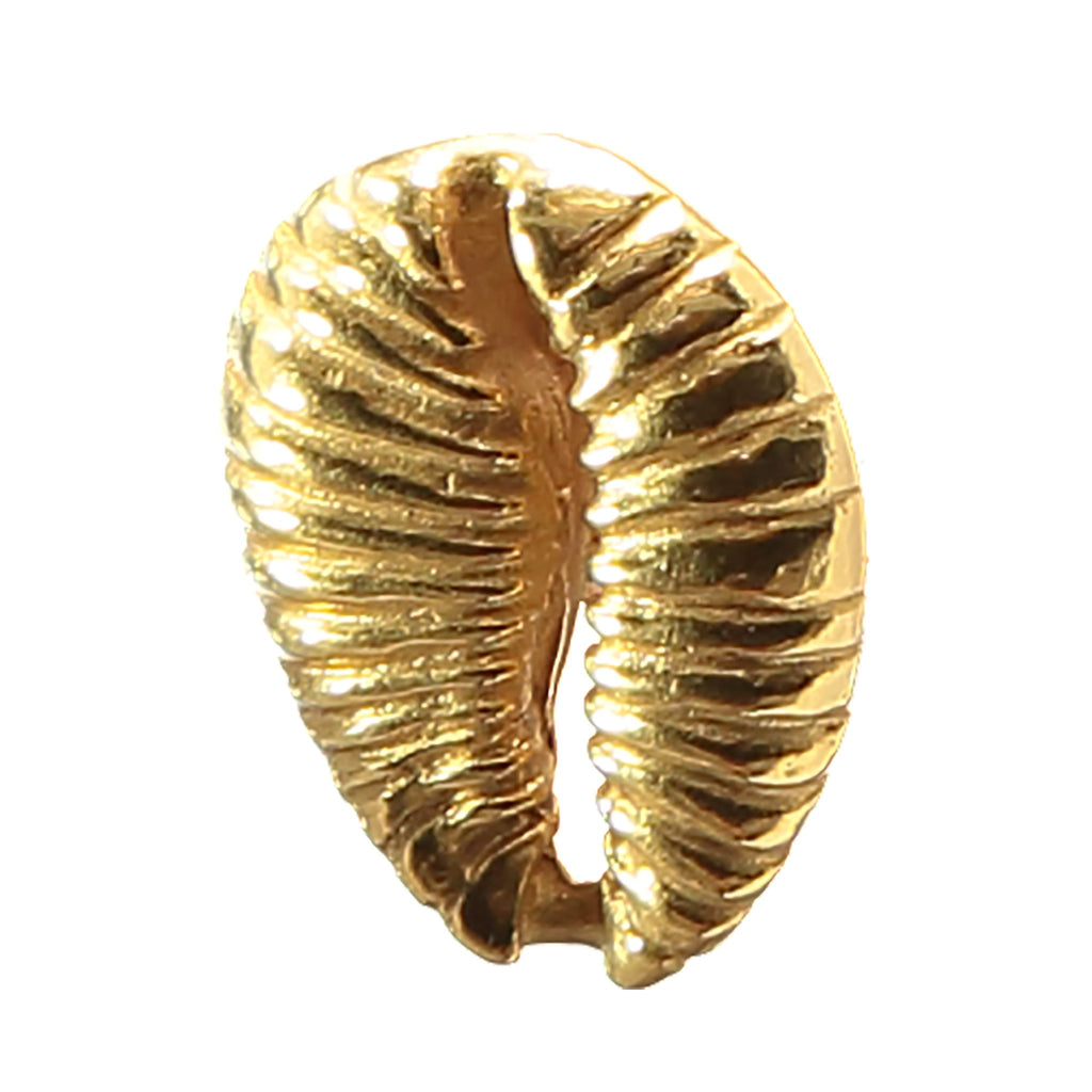 Cowrie Money Pin