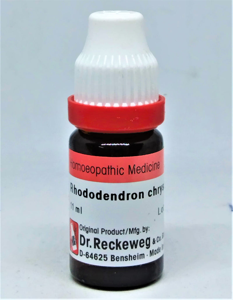 Dr Reckeweg Rhododendron Chrysanthum Dilution
