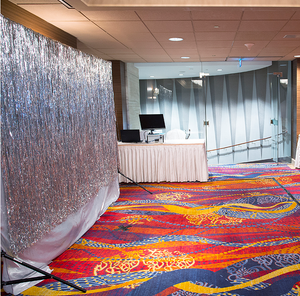 Shiny Shimmer Backdrop Rental