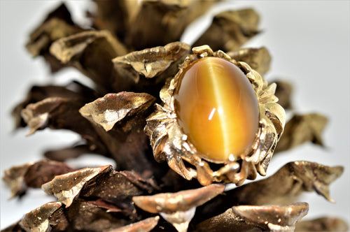 14K Yellow Gold Tiger's Eye Fashion Ring