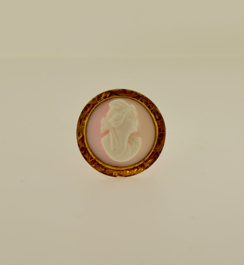 Light Pink Shell Round Cameo Gold Brooch