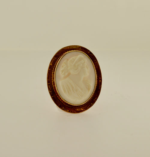 Oval Shell Cameo Gold Brooch/Pendant