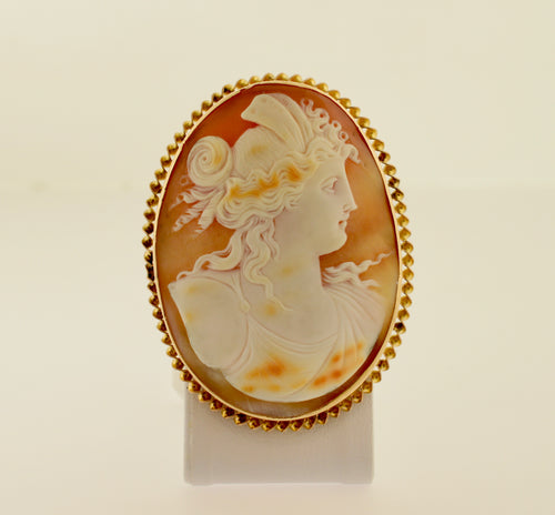 Gold Shell Cameo Pendant/Brooch