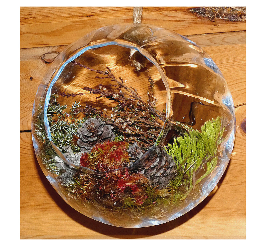 Clear glass ball plant terrarium against log wall, hand blown recycled glass, diameter 17 cm, 6.70 inch, Scandi artisan made.