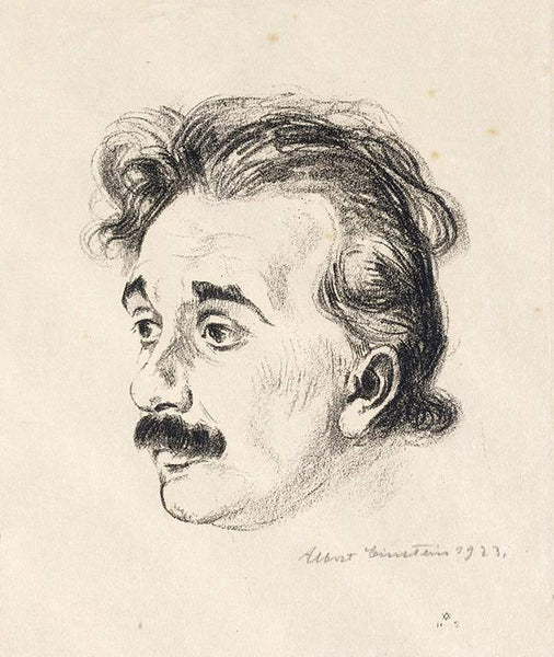 Genius Scientist - Albert Einstein Illustration