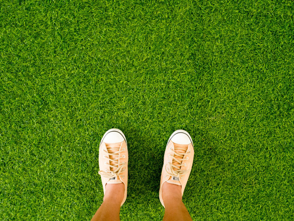 Our Top 3 Environmental Benefits of Artificial Grass