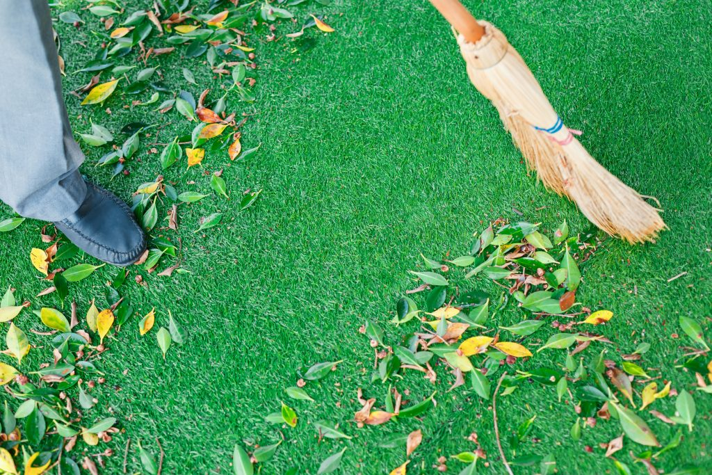 How To Maintain Your Artificial Grass & Keep It Looking Fabulous