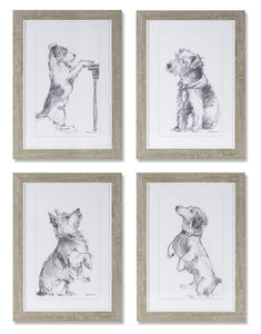 "Dog Print (Set of 4) 10"" x 14.25""H Plastic/Paper"