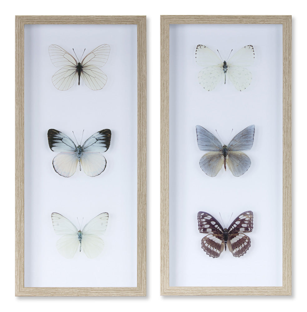 "Butterfly Print (Set of 2) 9.75"" x 20.75""H Plastic/Paper"