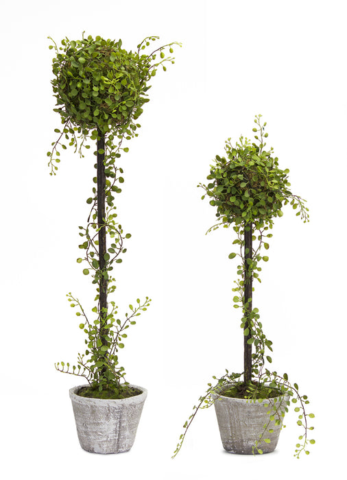 "Ball Topiary (Set of 2) 20""H, 27""H Plastic"