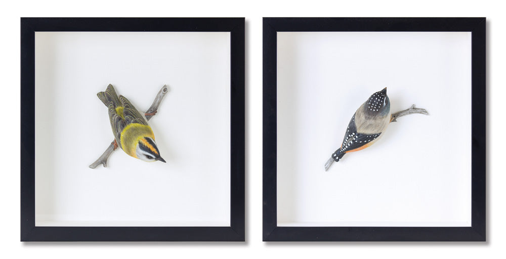 "Bird Shadow Box (Set of 2) 12"" x 12""H MDF/Resin"