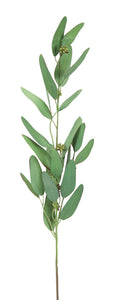 "Eucalyptus Spray (Set of 12) 31""H Plastic"