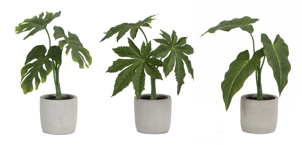 "Potted Foliage (Set of 6) 10""H, 10.5""H, 11.5""H Polyester/Plastic"
