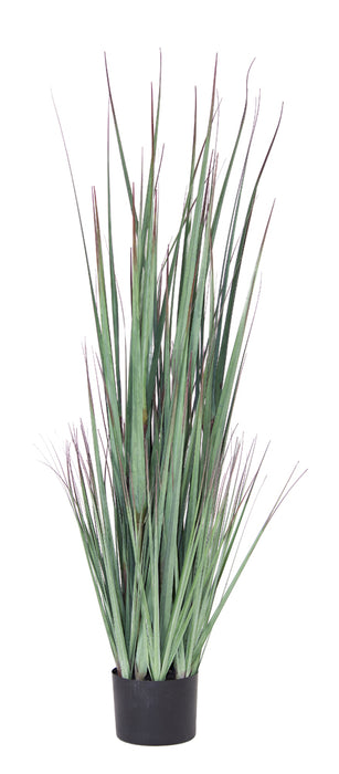 "Potted Grass (Set of 2) 48""H PVC/Plastic"