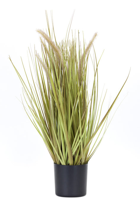 "Potted Grass/Dogtail (Set of 2) 27""H PVC/Plastic"