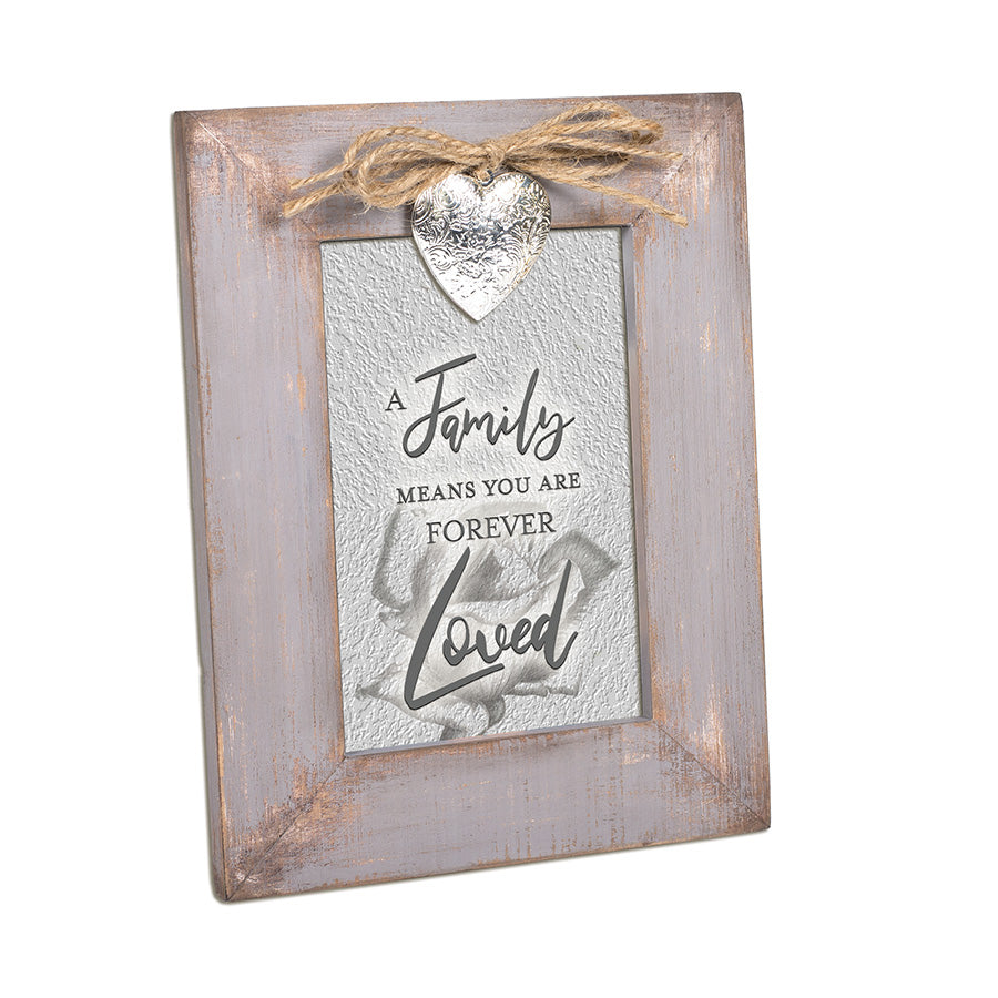 FAMILY MEANS YOU ARE FOREVER LOVED FRAME