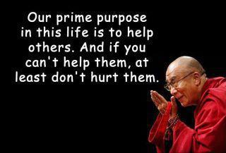 Our prime purpose in this life is to help others.  And if you can't help them, at least don't hurt them