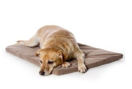 Foam Dog Bed - Small