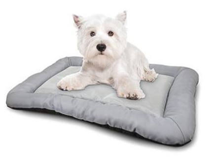 Hot and Cold Pet Bed- Medium