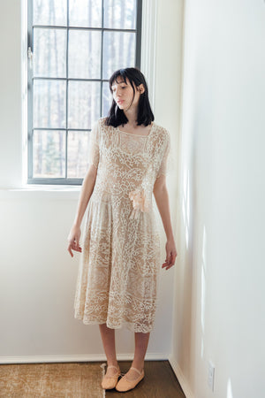 1900s embroidered silk net dress