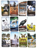 Animal Totem Tarot Cards - SweetWitch