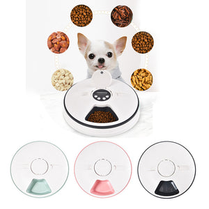 Pet Food Dispenser - N.Packs