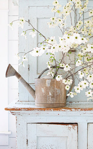 Vintage French Rustic Zinc Watering Can