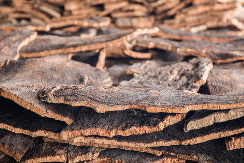 Cork bark detail