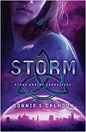 Storm - Stone Braide Chronicles Book 3