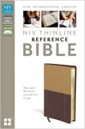 NIV, Thinline Reference Bible, Leathersoft, Tan/Burgundy, Red Letter Edition