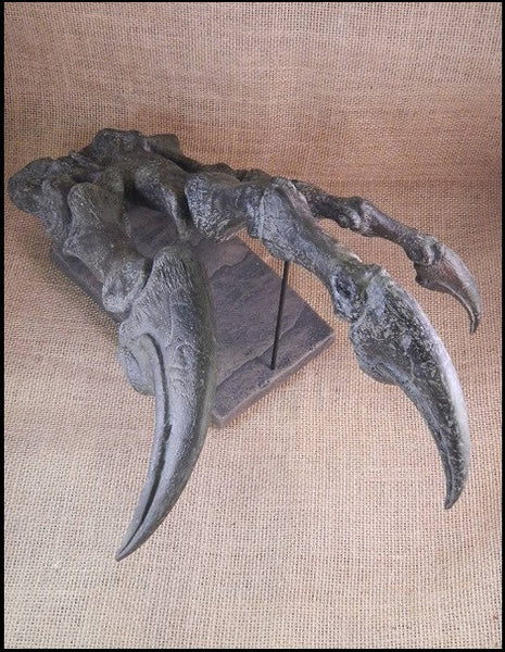 "Cast Replica Allosaurus Hand w/ Claws 15&1/2"" (large allosaurid dinosaur)"