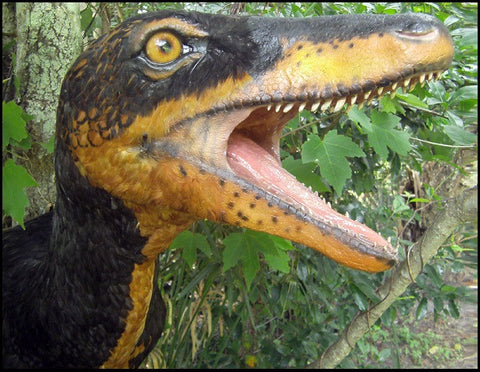 "Deinonychus ""Raptor"" Trophy Mount w/ Real Feathers"