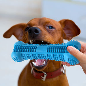 Bone Brush - Dog Dental Toothbrush  Chew Toy
