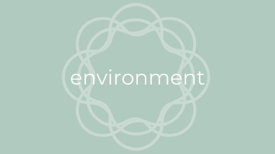 environmental impact of period products