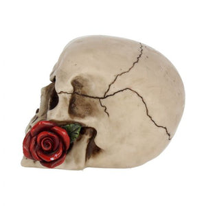 Red Rose from the Dead 15cm ***COMING SOON***