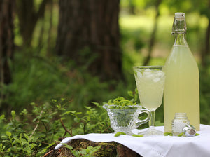 Spruce-Xylitol Drink