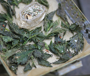 Nettle chips with Porcini Salt