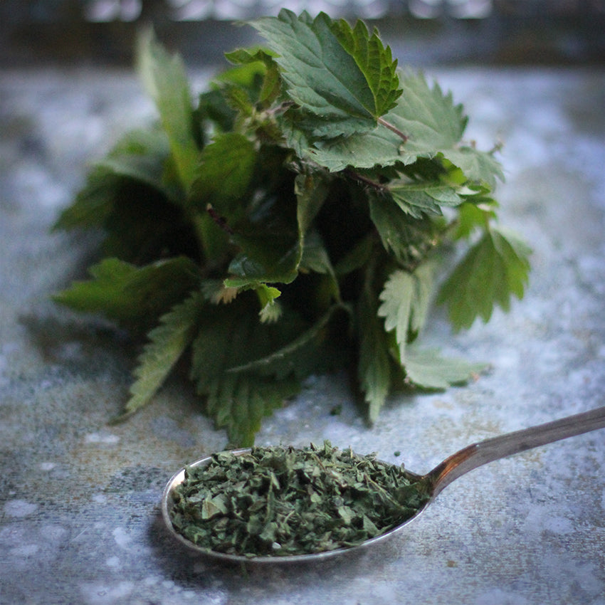 nettle leaf crush