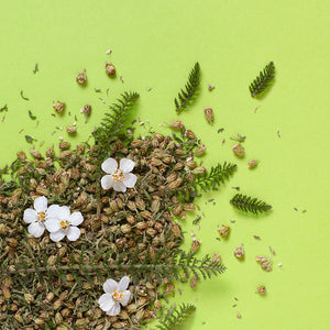 Yarrow Flower 20g