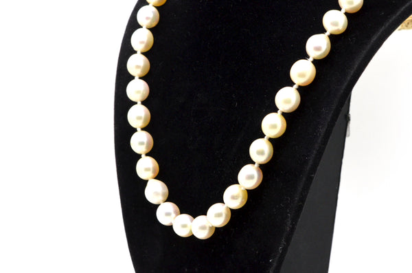 14k Yellow Gold White 8 mm Pearl Strand Necklace with Clasp - 19 in.
