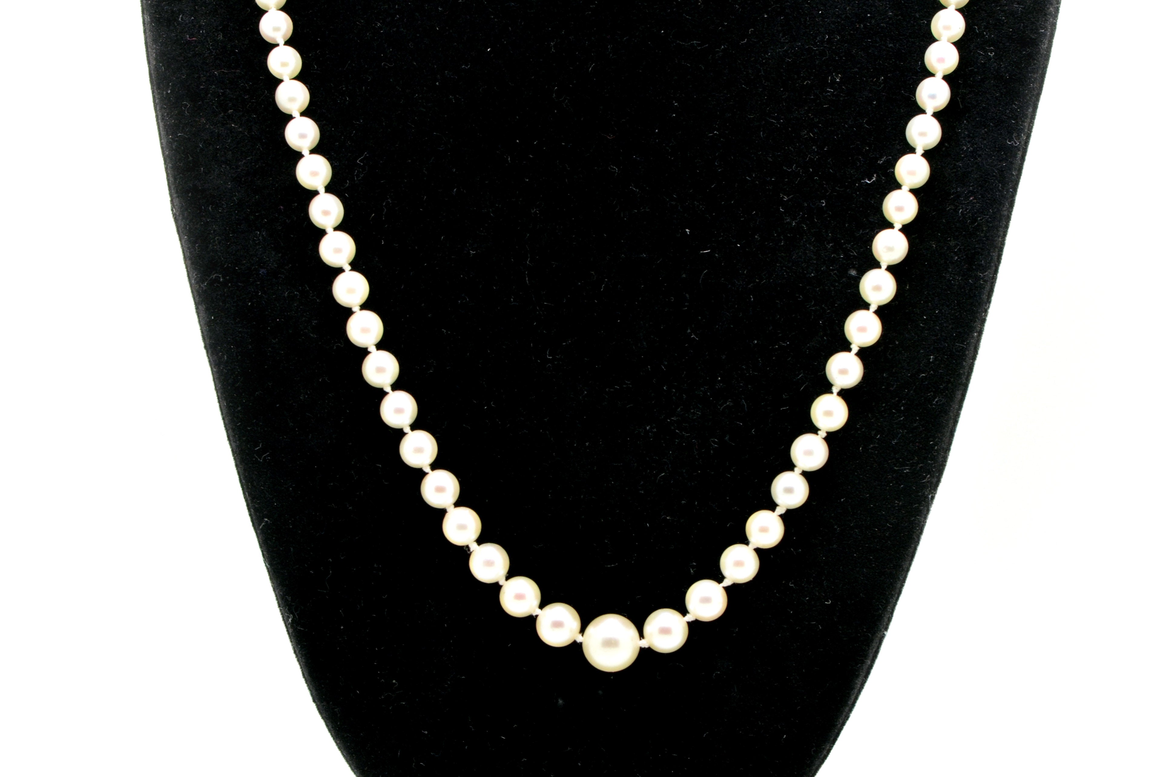 14k White Gold Strand of White Akoya Pearl Strand Necklace with Clasp - 17 in.