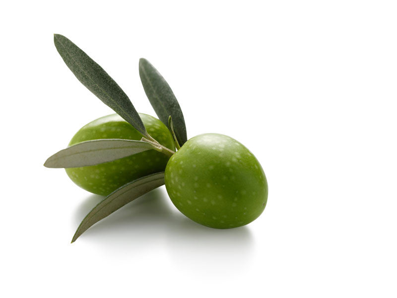 Arbequina - Extra Virgin Olive Oil