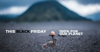 Black Friday: 100% Profit for Our Planet