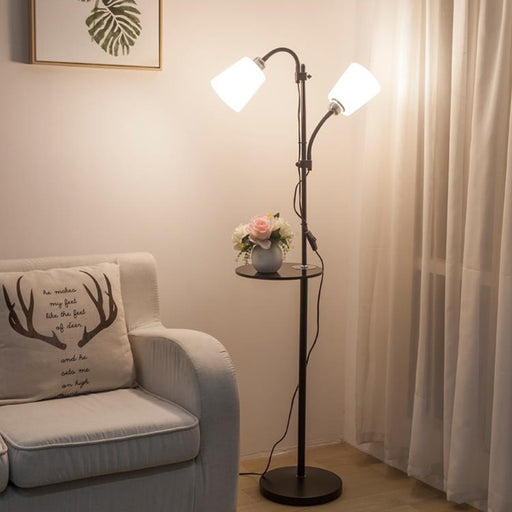 Modern Style Acrylic Iron Painted Floor Lamps