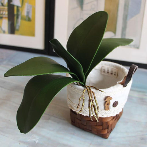 Artificial & Silk Plants - Phalaenopsis Leaf Decorative Auxiliary Artificial Plant